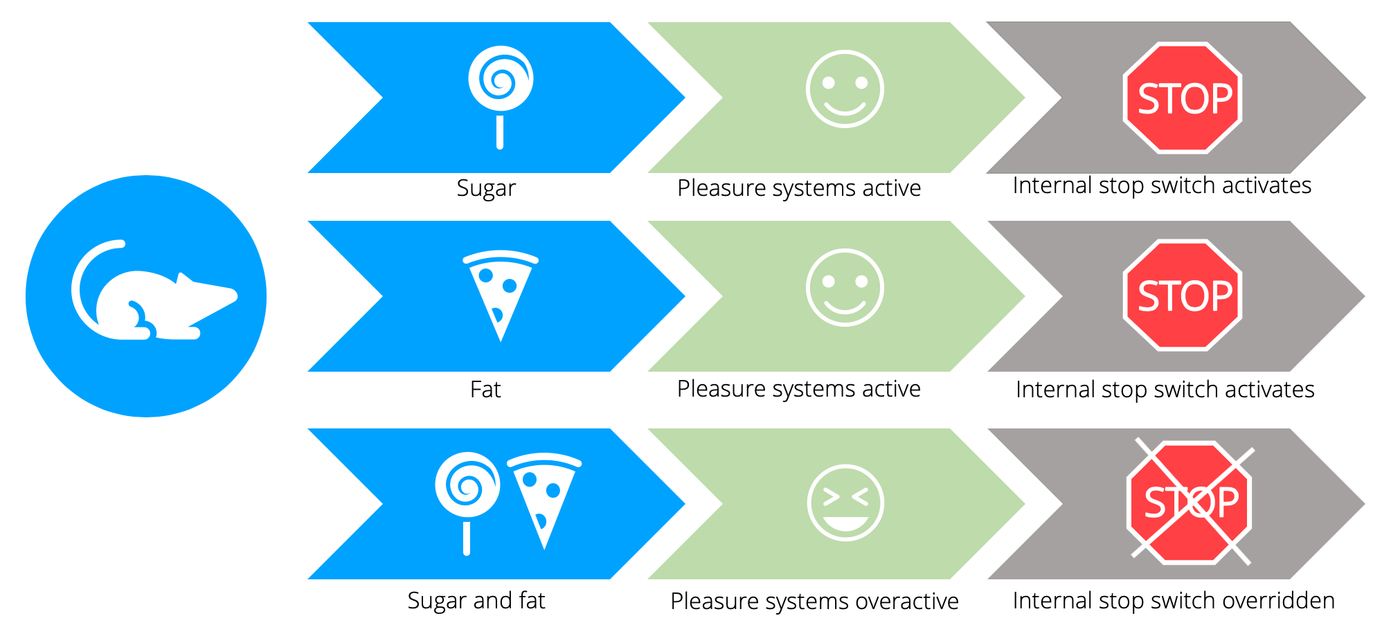 Diagram illustrating the effects of eating sugar and fat alone vs. sugar and fat combined.