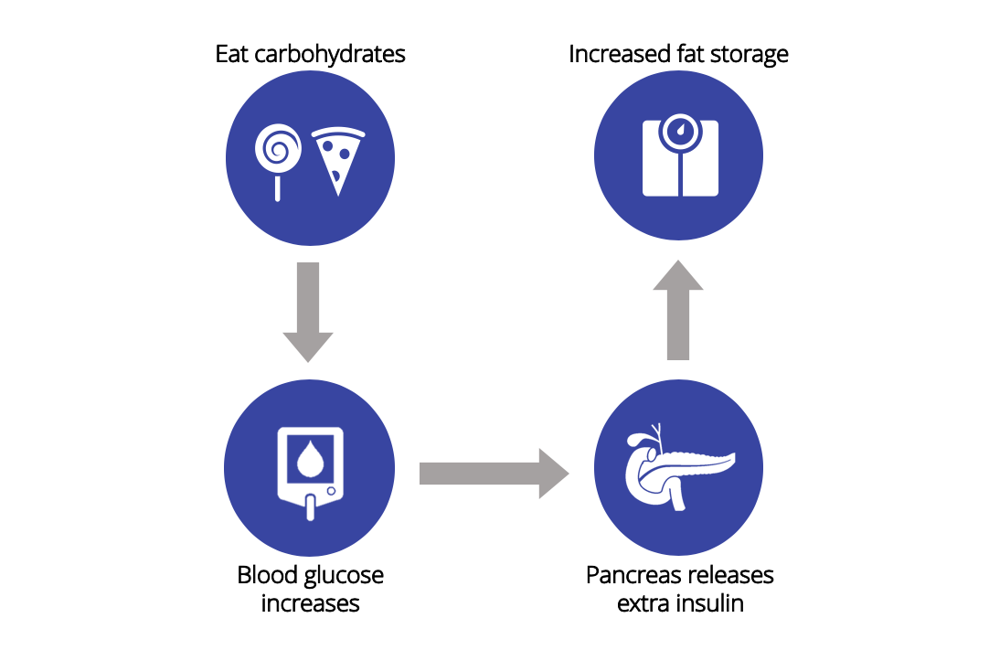A simplified infographic explaining how eating high-carb can promote fat storage.